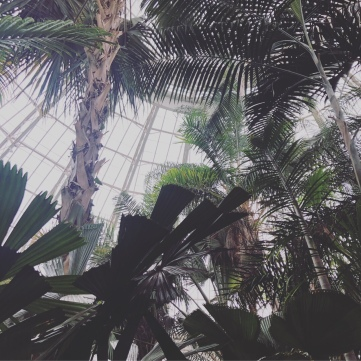 rainy day in nyc | new york botanic gardens