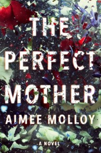 the perfect mother by aimee molloy